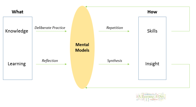 mental models, learning to insight, knowledge to skills